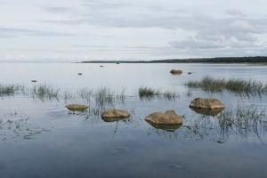 Mudanza a Finlandia