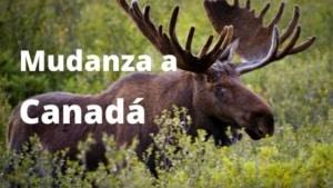 Mudanza a Canadá