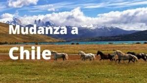 Mudanza a Chile