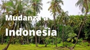 Mudanza a Indonesia
