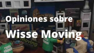 Opiniones sobre Wisse Moving